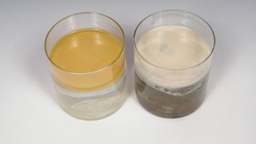 Microbes - Before and After Jars